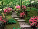 backyard making backyard flower garden designs to enhance the beauty