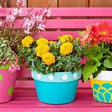 outdoor home decorating with flowers plants and creative planters