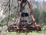 primitive grapevine outdoor decor very rustic outdoor lighting garden