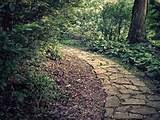 Garden Path Photograph Rustic Decor by AmericanaArtByEllis on Etsy.