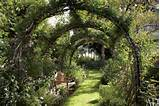 ... covered garden trellis, vine covered garden trellis, trellis archway