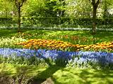 your home flower garden garden ideas flower garden ideas 600x450 jpg