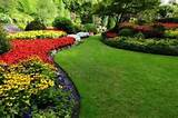 flower beds in formal garden royalty free stock photo pictures flower