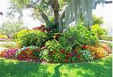 you can download beautiful flower garden design ideas for free