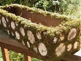 Rustic Woodland Planter Box Moss Branch Centerpiece Garden Party Decor ...