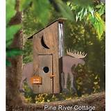 Rustic-Moose-Wooden-Outhouse-Birdhouse-Country-Cabin-Garden-Yard-Decor