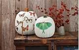 Party Decorations Ideas : Splendid Outdoor Halloween Decorations ...