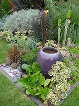small garden ideas surrounding this beautiful pot with strong plant