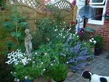 small garden spaces demand as much if not more careful planning to