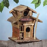 Backyard, Lawn, Garden Decorations, Decorative Bird houses, Outdoor ...