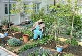 ... Small Vegetable Garden Ideas Delectable Garden Ideas Personable Garden