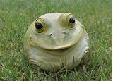 details about portly frog hide a key garden statue outdoor decor