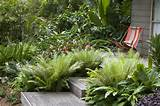 ... Garden Ideas new , Small Tropical Garden Idea , Small Tropical Garden
