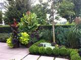 Modern Tropical Patio Garden tropical landscape