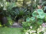 ... to create his ambling trail through glorious tropical garden rooms