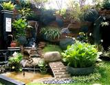 Garden with Tropical Landscape: Bring the Warmth into Your Garden