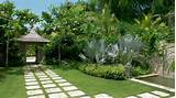 tropical garden landscape ideas photograph tropical garden 554x311 ...