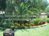 tropical garden ideas - tropical landscaping designs of tampa bay ...