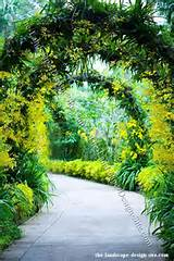tropical landscaping ideas – tropical garden arbor ideas [600x900 ...