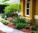 design ideas tampa landscape design ideas with light garden