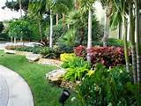 Landscape Garden Design Ideas With Ornamental Plants