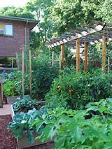 Great Vegetable Garden Landscape Ideas Best Source for Home and Garden ...