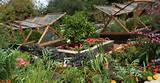 vegetable garden ideas jpg pic 6 landscapephotos biz 149 kb 813 x 424 ...