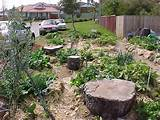 ... Beautiful Permaculture Garden Designs : Vegetable Garden Design Ideas