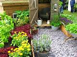 raised beds of this edible garden lots of containers lettuce mixed ...
