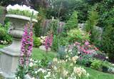 com type of plants for english garden english garden landscape ideas