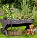 Country Gardens – Best Ideas