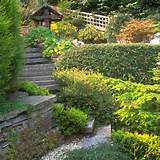 country style garden gardening design ideas photo gallery