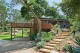 Modern Native Garden Allambie Bushland Garden