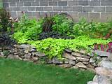 basic garden landscaping ideas tips landscape and