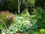 topics garden landscaping ideas uk home and garden landscaping ideas