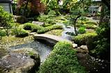 garden pond with mini bridge decoration beautiful natural pond layout