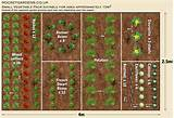 ... design small vegetable garden ideas blueprint pictures 700x482 Garden