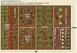 design small vegetable garden ideas blueprint pictures 700x482 garden