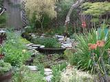 home garden design backyard 1024x768 creating your own backyard