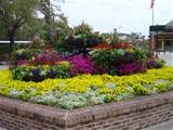 wonderful interior flower garden ideas brick landscape edging