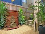 ... garden design from a real Australian home - Gardens photo 477131