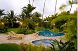 tropical garden designs on landscaping ideas backyard tropical garden