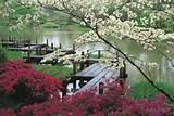 japanese-garden-jjennings-design-600x402.jpg