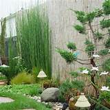 small zen garden design photograph designs for smal