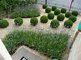 ... Small Garden Design Ideas Images Small Garden Design Ideas Comely
