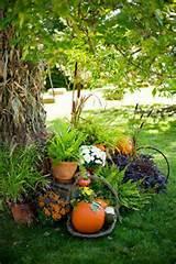 Impressive Autumn...