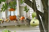 12 fall decor ideas for and from the garden 5 12 Fall Décor Ideas For ...