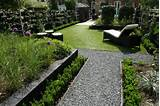 modern bacykard garden lawn how to care for your lawn this autumn