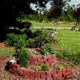 herb garden spiral completed