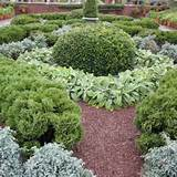herbal tea gardens herb garden design